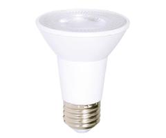 LED Light bulb PAR 20 DEL