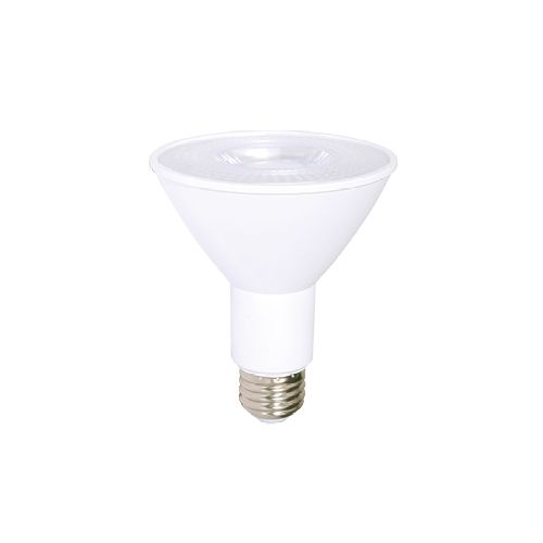 LED Light bulb PAR 30 DEL