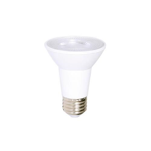 LED Light bulb AMPOULE PAR 20 DEL